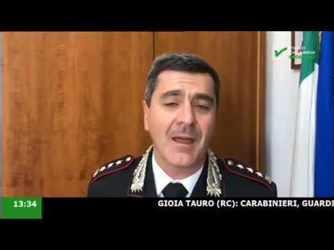 InfoStudio il telegiornale della Calabria notizie e approfondimenti - 14 Novembre 2019 ore 13.30