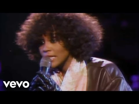 Whitney Houston - Didn't We Almost Have It All:歌詞+中文翻譯