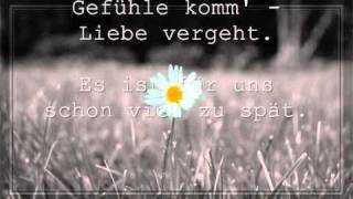 Alex C. feat. Y-Ass - Zu viel Liebe killt mich (Lyrics)