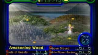 World Map (Pikmin 2) - History Behind Super Smash Bros. Brawl Music