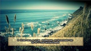 Файсал ар-Рушуд. Сура 26 «Поэты» (красивое чтение) ᴴᴰ