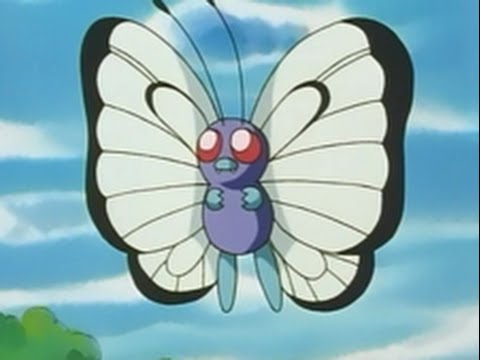 all ash s butterfree moves youtube