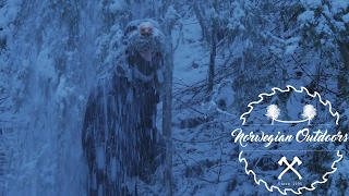 Snowy winter camping by the rivers (Subtitled)