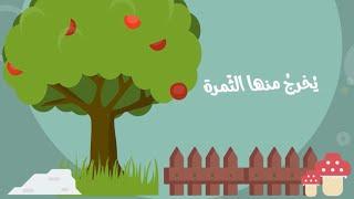 انظر لتلك الشجرة ! أداء أحمد النفيس