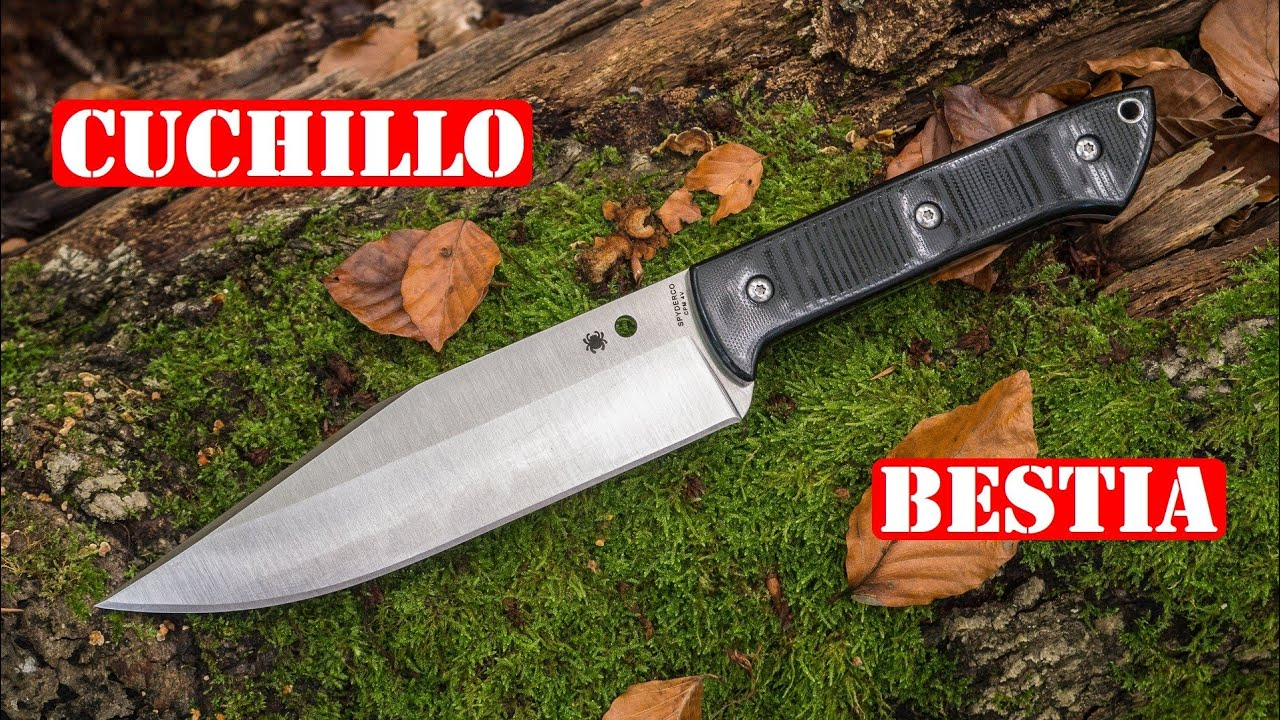 Mi Cuchillo Más Bestia - Spyderco Province