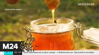 Москвичам рассказали, как выбрать мед - Москва 24