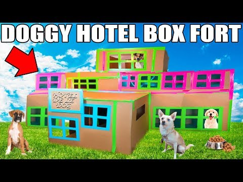 3 STORY DOG BOX FORT HOTEL!!  Boxfort hotel de le dog!