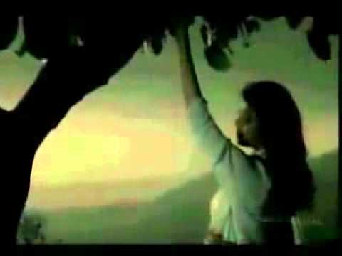 Teri Yaad Humsafar Subha o Shaam - M ALI JANWERI VIP song .mp4