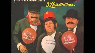 3 Lausbuben - Hereinspaziert - Ein Spiegelbild aus unserer Zeit - Es wird Nacht, Senorita u. a.