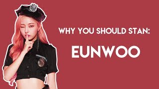 Why You Should Stan Eunwoo