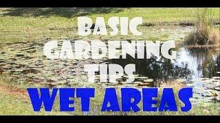 BASIC GARDENING TIPS - WET AREAS
