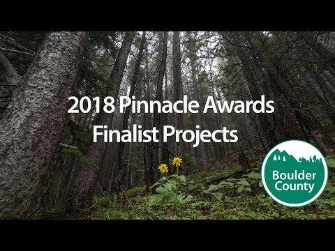 2018 Pinnacle Finalists