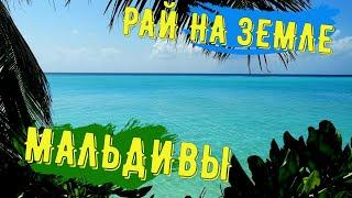 Мальдивы. остров Тодду. Воспоминания на всю жизнь!