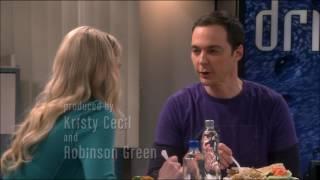 The Big Bang Theory   Ramona Nowitzki Returns