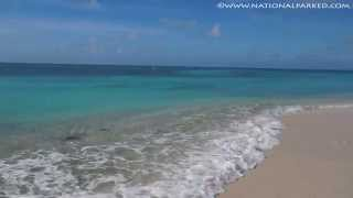Beach Areas in Dry Tortugas National Park (1080p)