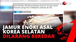 Bahaya Bakteri Listeria di Jamur Enoki.