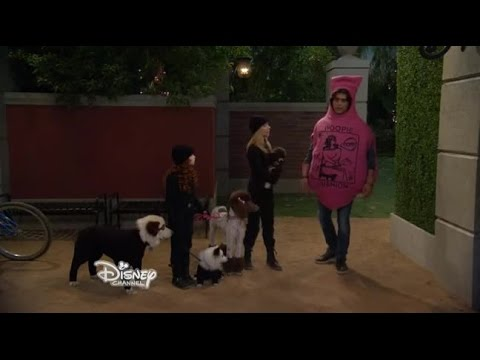 Dog with a Blog S01E18 A New Baby