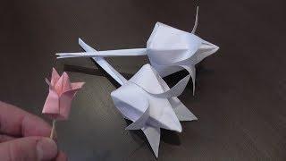 Тюльпан из бумаги / Объемный тюльпан своими руками(Привет, друзья! Научу вас делать бумажный тюльпан! Такое оригами можно подарить кому-то близкому на праздни..., 2014-02-15T17:22:43.000Z)