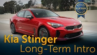 2018 Kia Stinger - Long-Term Ownership Introduction