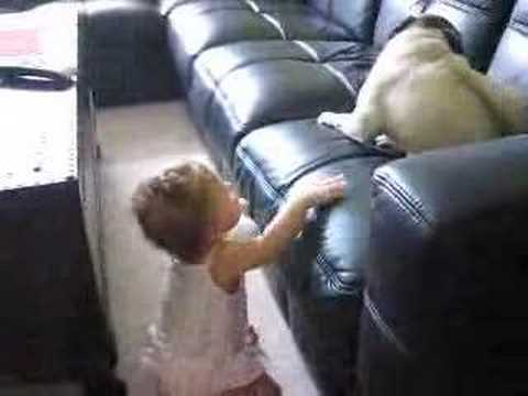 Baby playing with pug