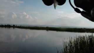 Гарне озерце біля Коломиї