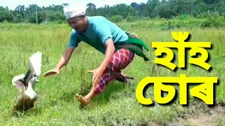 হাঁহ চোৰ / Assamese video / Assamese comedy video.Assamese funny video
