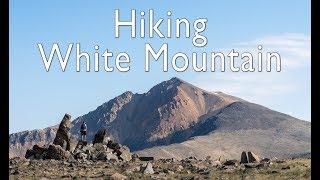 Hiking White Mountain Peak: The Third Tallest Summit in California