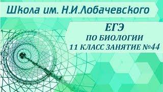 ЕГЭ по биологии 11 класс Занятие 44.  Многообразие живого мира