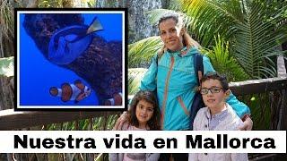 VLOG Palma Aquarium/ NUESTRA VIDA EN MALLORCA/ Talianne Aventuras en familia