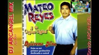 Mateo Reyes Mix Puras Chilenas Perrona (nuevo Mix 2017)
