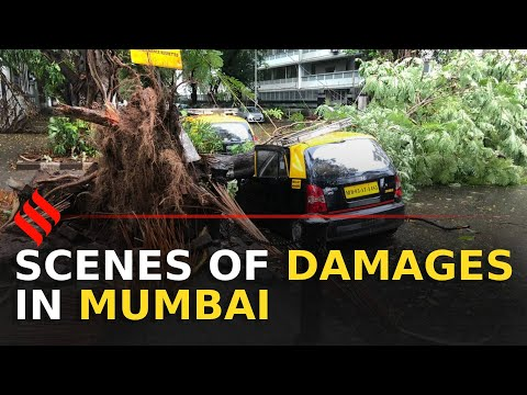 #CycloneNisarga: Scenes of damage in Mumbai | Mumbai Cyclone