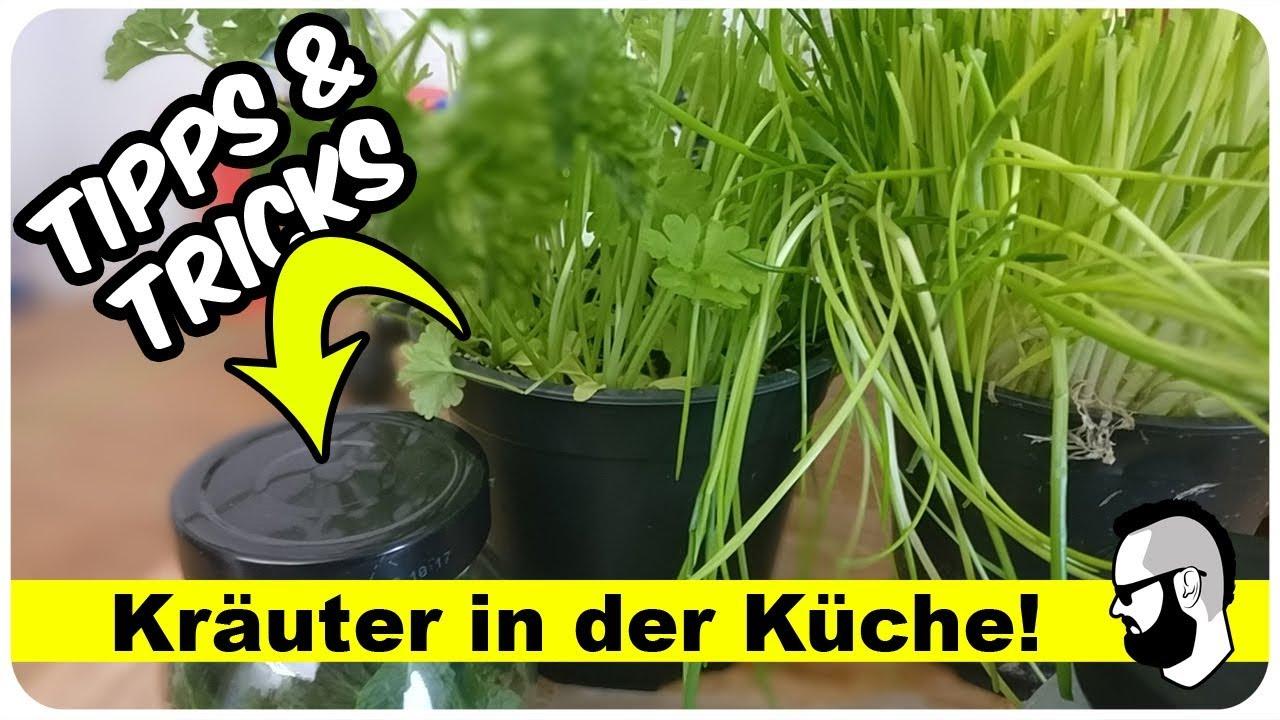 kr uter pflanzen auf der fensterbank tipps tricks youtube. Black Bedroom Furniture Sets. Home Design Ideas