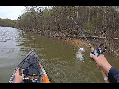 MUSKIE BATTLE While Kayak Bass Fishing Cave Run Lake