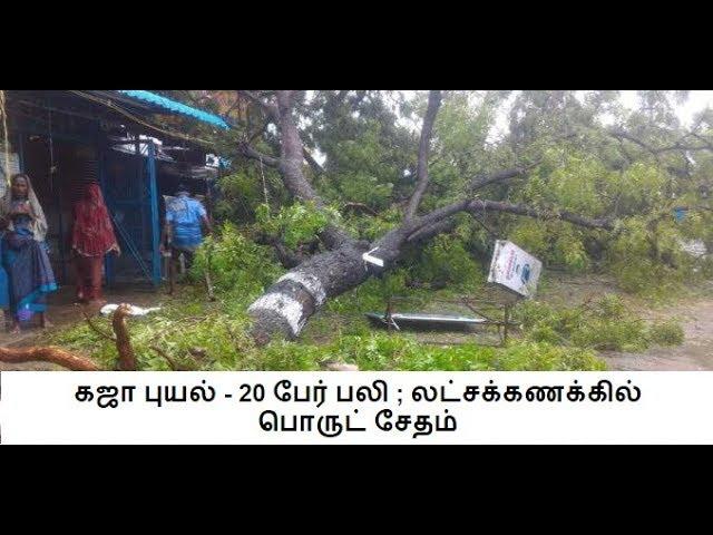 கஜா புயல் - 20 பேர் பலி ; லட்சக்கணக்கில் பொருட் சேதம் | In4net