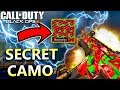 How To Get the *SECRET* Watermelon Camo Black Ops 3
