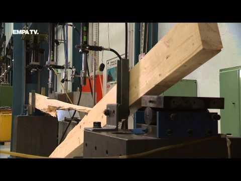 Wunderwerkstoff Holz – Belastbar, Vielseitig Und Nachwachsend