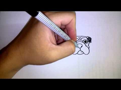 วาดการ์ตูนกันเถอะ สอนวาดการ์ตูน น้องหมา พันธุ์ปั๊ก ง่ายๆ หัดวาดตามได้