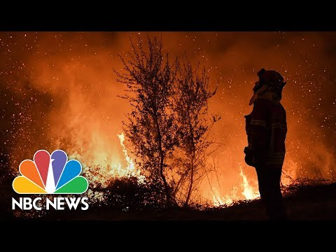 Deadly Wildfires Kill At Least 36 In Portugal | NBC News