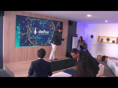 Delfox presentation