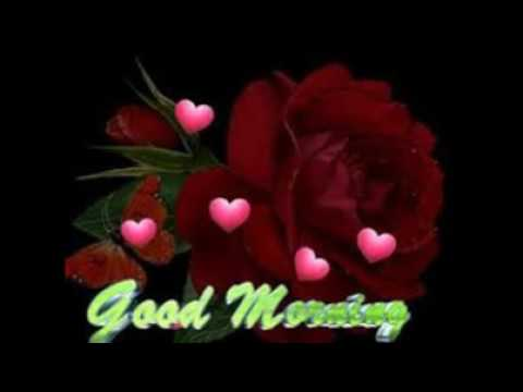 Good Morning Flowers Video Hd 1080p Youtube