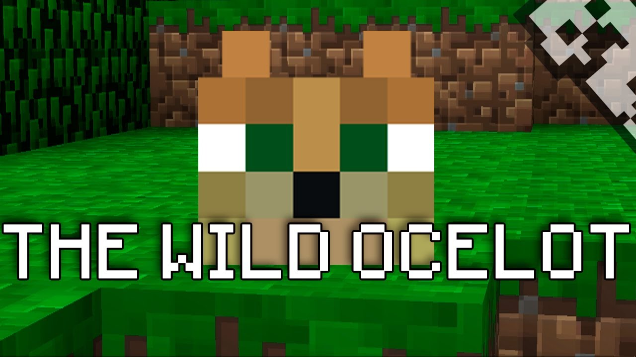 Make Cute Minecraft Wallpapers Minecraft The Wild Ocelot Youtube