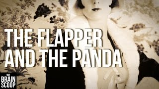 The Flapper and the Panda(In 1936, Ruth Harkness - a dressmaker from New York -- set off to China in search of the rare, elusive Giant Panda. Her goal? Bring one back alive to share the ..., 2016-07-15T18:24:00.000Z)