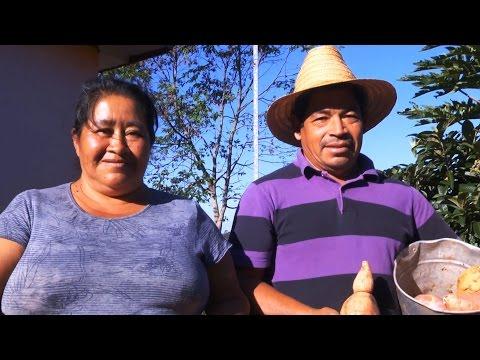 Rede BioFORT: Ações no Noroeste gaúcho junto a comunidades indígenas