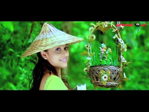 Manasara Telugu Movie HD Video SongParavaledu SongSri DivyaRavi BabuYouTube 720p