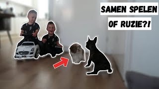EEN PUPPY ERBIJ IN HUIS! | VLOG #98 / FAMILIEVLOGGERS