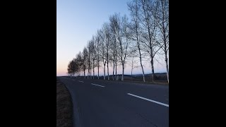 http://bit.ly/1Mv00mP 松本人志、喜多嶋舞を痛烈批判 「共演NG」「笑...
