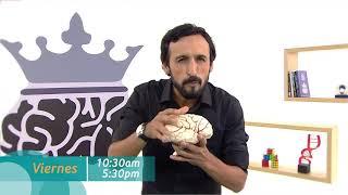 La neurona reina (TV Perú) - 22/06/2018 (promo)