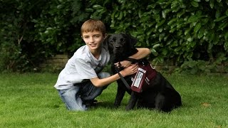 Hearing Dogs Awards 2014 - Life-changing Child Partnership Of The Year Runners Up