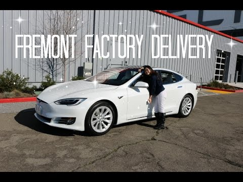 Taking Delivery of our Tesla Model S | Tesla Journey