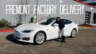 Taking Delivery of our Tesla Model S | Tesla Journey